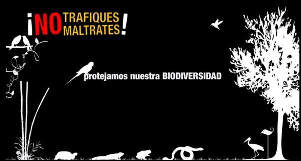 campaña flora y fauna
